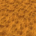 Ламинат HDM Elesgo Superglanz 770401 Тис Золотой