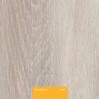 Ламинат Kastamonu Yellow Дуб Пепельный FP0011
