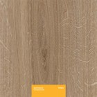 Ламинат Kastamonu Yellow Дуб Каньон натуральный FP0013